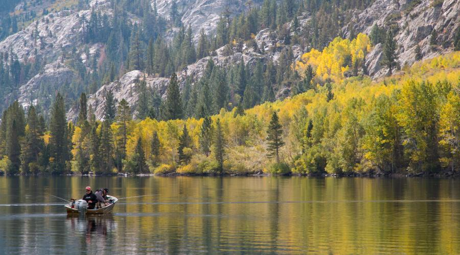 Silver Lake green fall colors