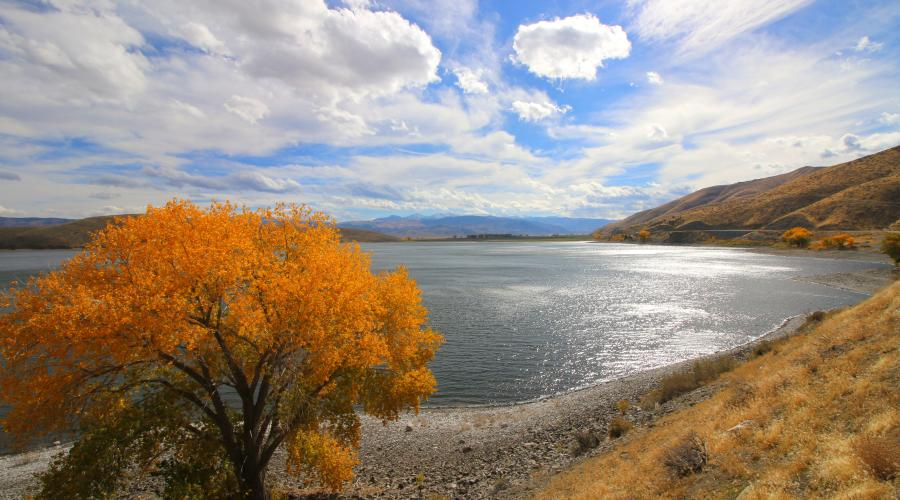 Topaz Lake Fall Colors