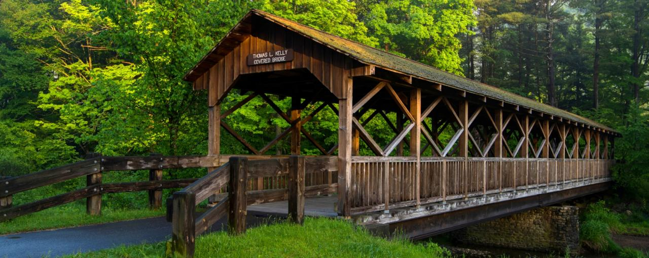 Copy of Thomas Kelly Covered Bridge in Allegany State Park