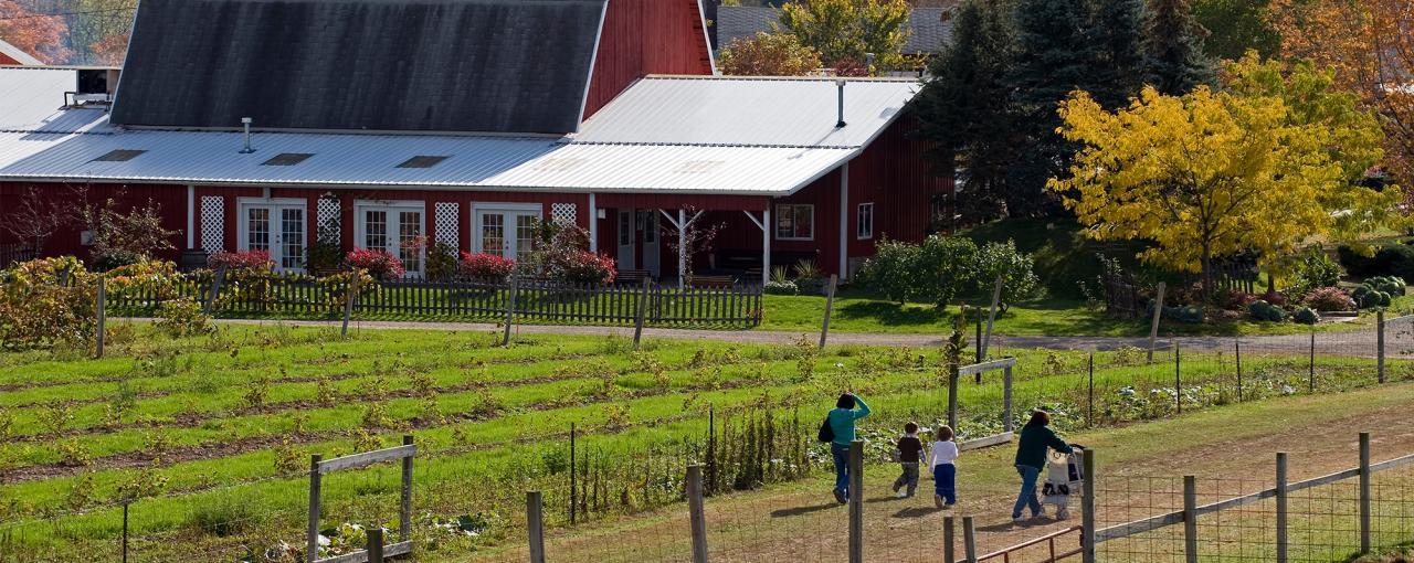 New York Farm Tours | Orchards, Dairy Farms, Local Foods