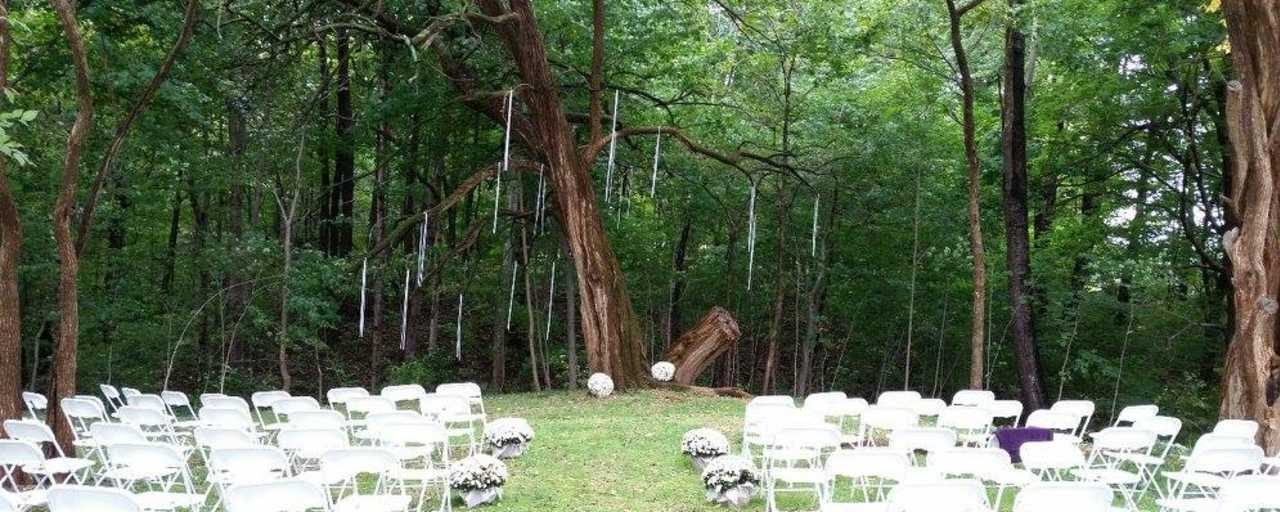 The Wedding Tree at Willowfield Lavender Farm