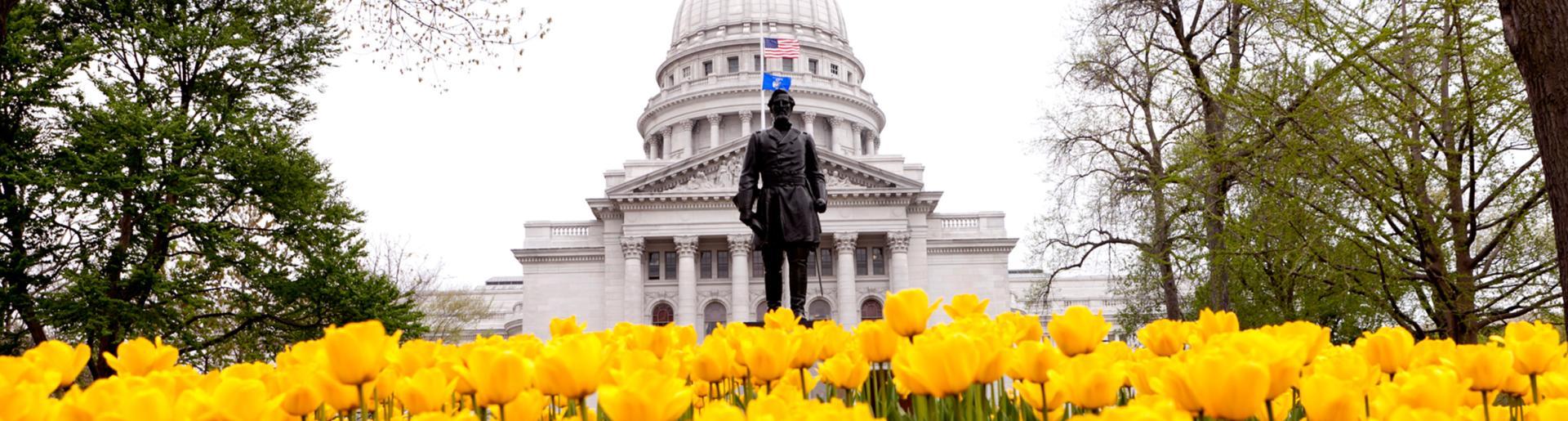 Capitol Building w Tulips