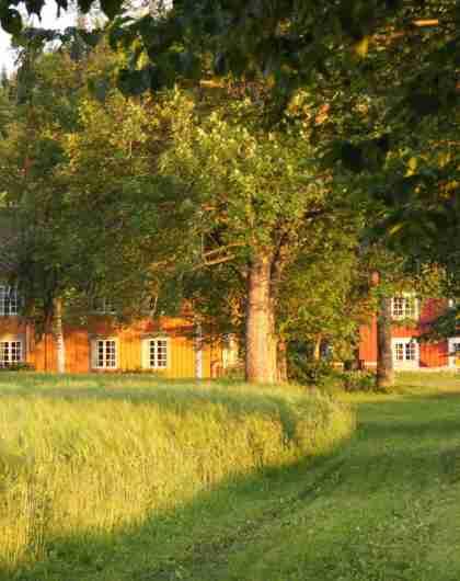 An idyllic farm with a large farmhouse where you can stay with HANEN