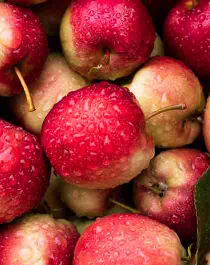 Äpplen från Syse Gard i Ulvik i Hardangerfjord, Fjord Norge