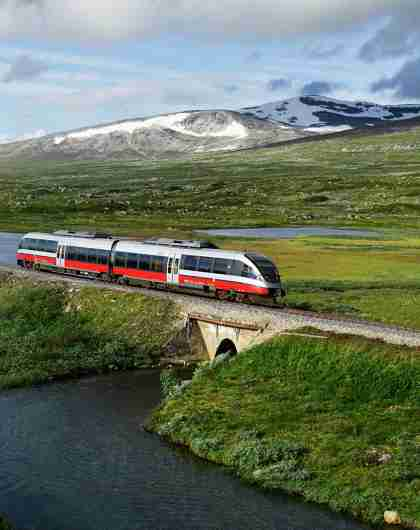 A train passing by a lake in Saltfjellet mountain area in Nordland