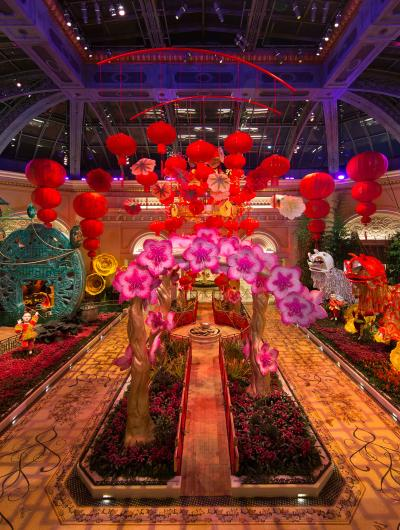 Bellagio Conservatory Chinese New Year