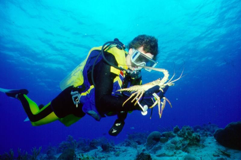 Man Scuba Diving and Holding Lobster In Greater Fort Lauderdale
