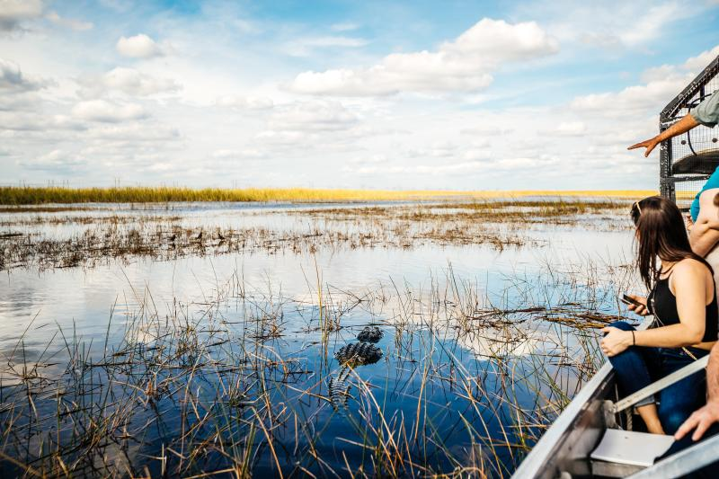 People enjoying the scenery on an Everglades airboat tour in Florida