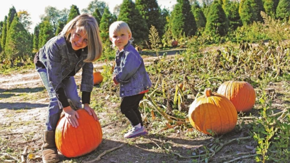 2018 indianapolis pumpkin patch guide | indy's child magazine.