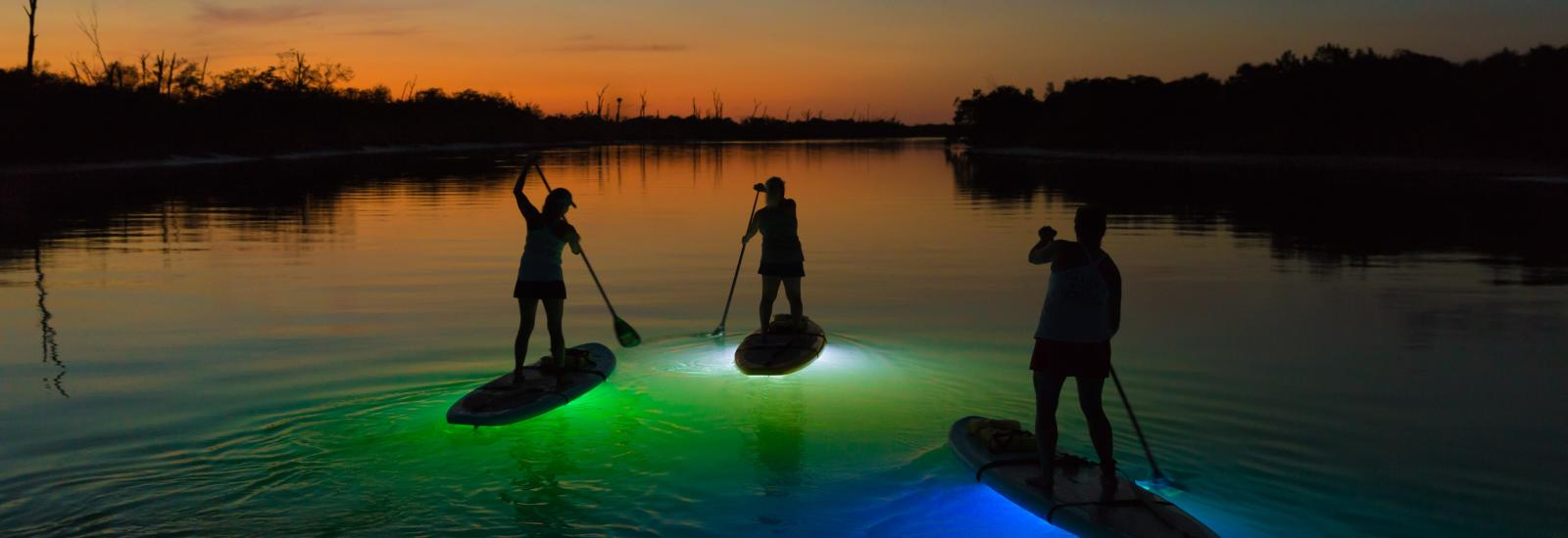 Lighted Night SUP Tour