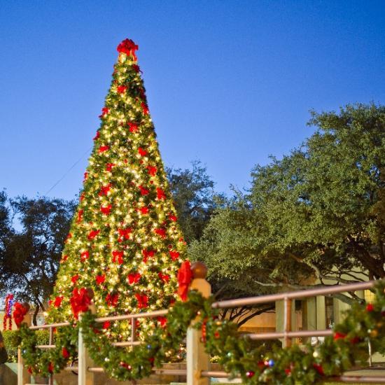 Fort Worth Holiday Checklist