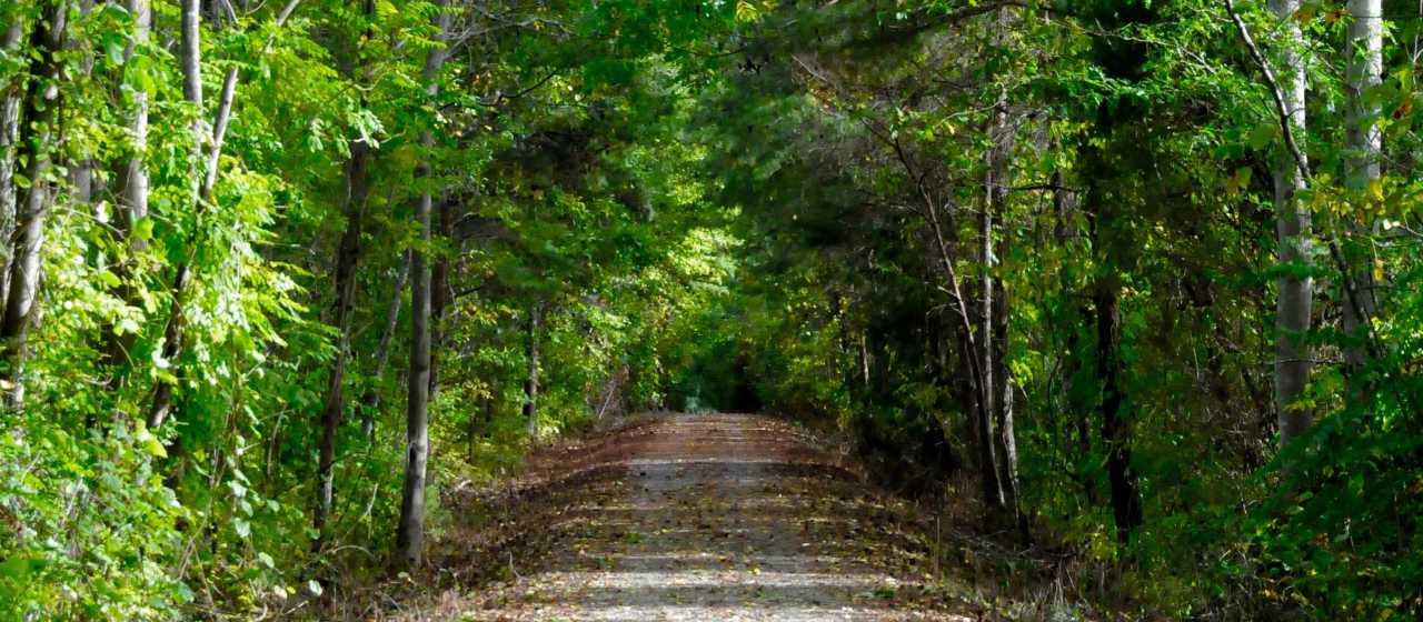 Thermal Belt Rail Trail}