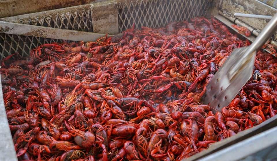 Rouse's - Crawfish Boil - French Quarter Fest 2016 - U.S. Mint