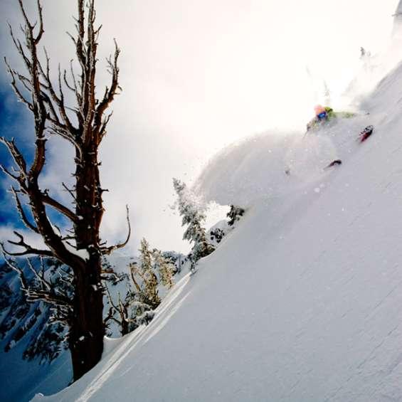 2011 Ski Salt Lake Shootout: 1st Place Portfolio