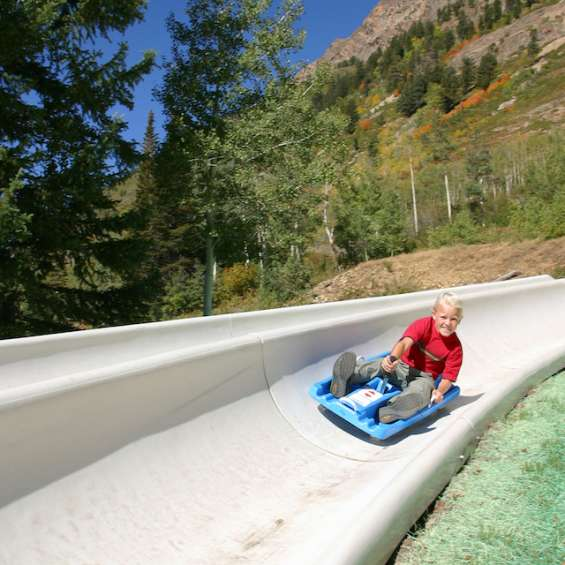 Alpine Slide at Snowbird