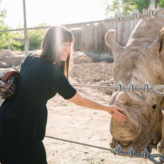 Petting a Rhino at Utah's Hogle Zoo Brew
