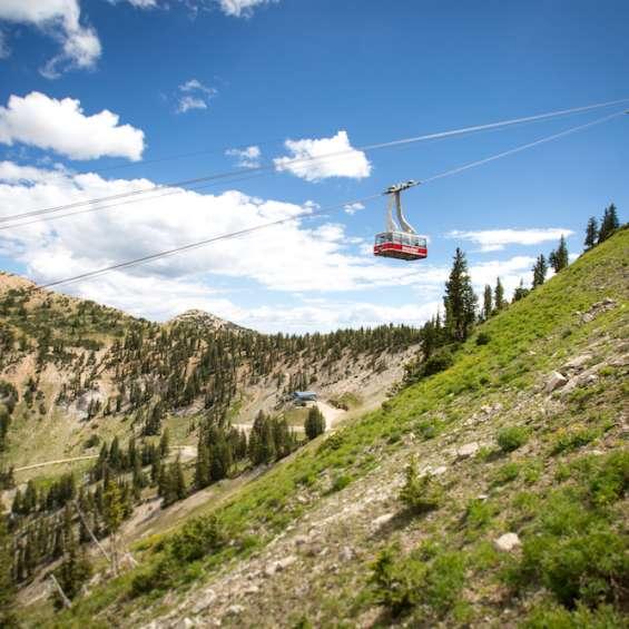 Tram Ride at Snowbird