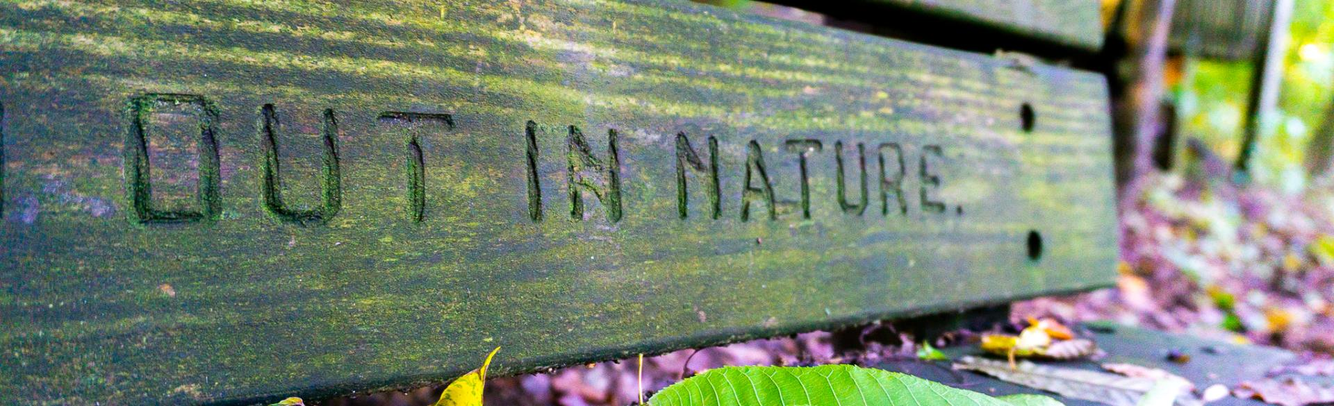 "A bench that reads ""out in nature"" at Blandford Nature Center."