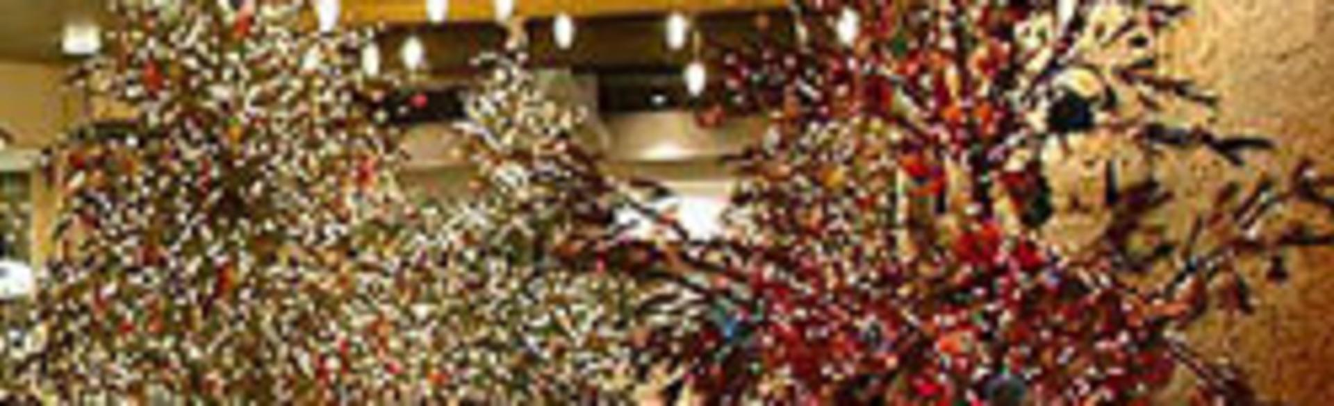 Grand Rapids Holiday Shopping | Experience Grand Rapids