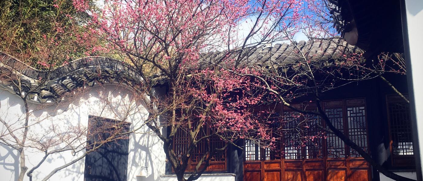 Scholar's Garden Snug Harbor
