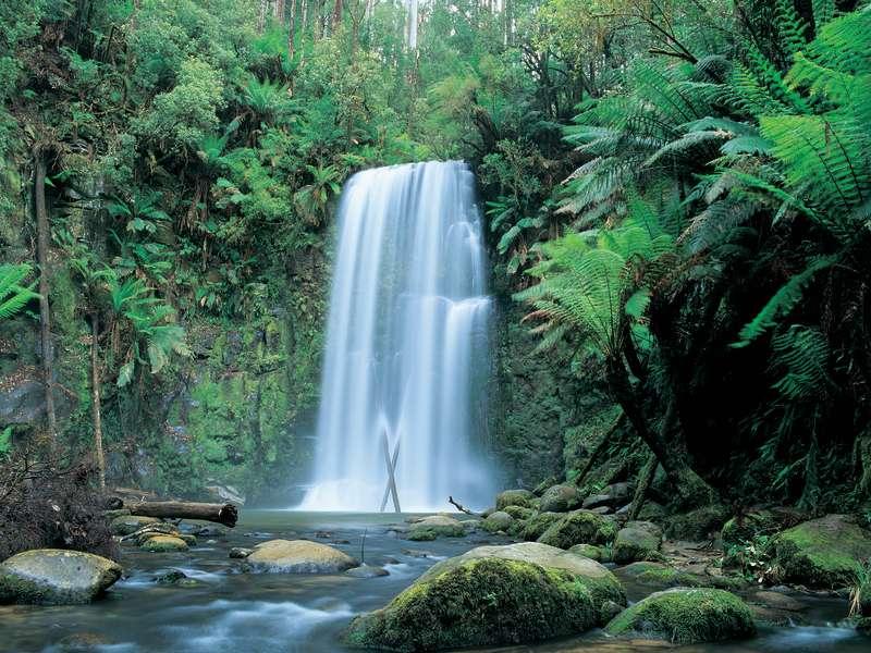Beauchamp Falls, Great Ocean Road, Victoria