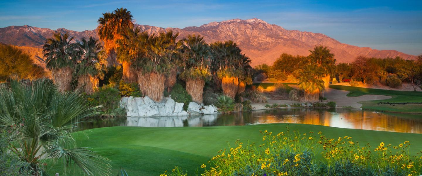 Palm springs golf guide.