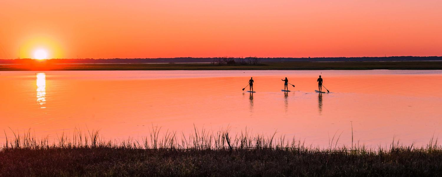 A group paddleboards through the calm marsh rivers at sunset in Golden Isles, Georgia