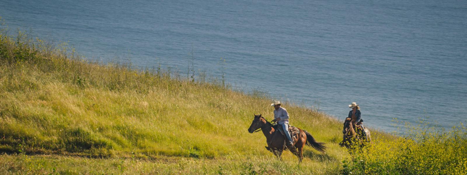 HORSES PISMO