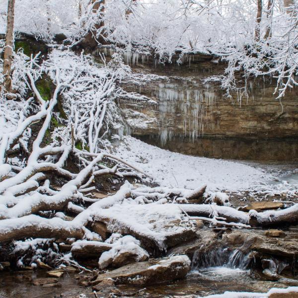 cascades park bloomington