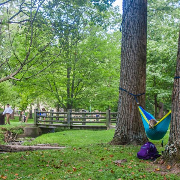 Hammock Campus Full