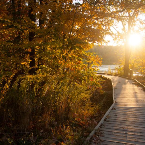 griffy-lake-trail