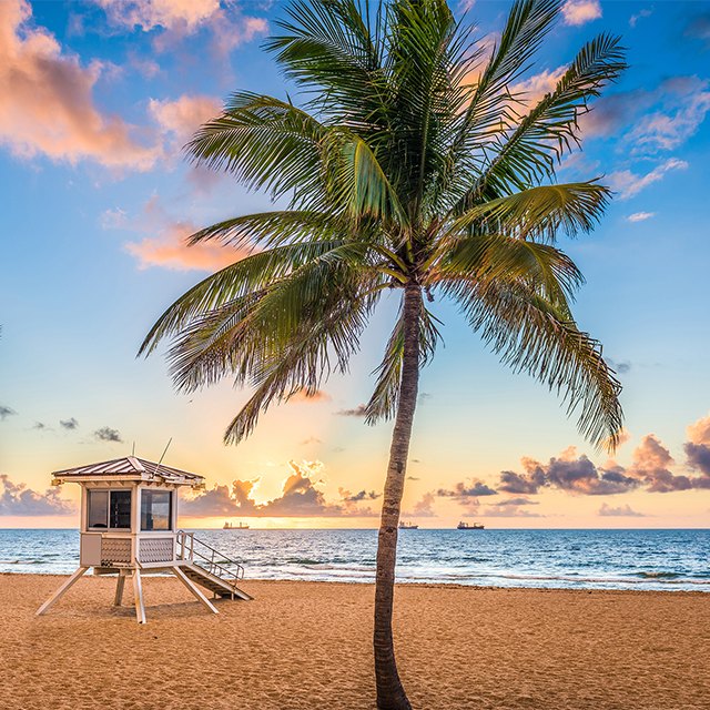 Fort Lauderdale Hotels, Things to Do & Vacation Planning