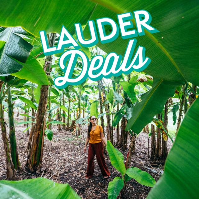 LauderDeals logo with Woman walking among trees at Flamingo Gardens
