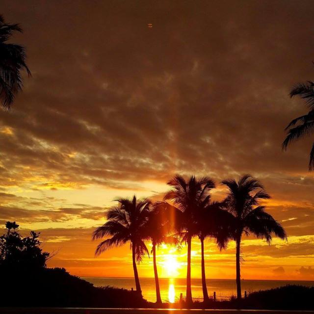 Sunrise with mj
