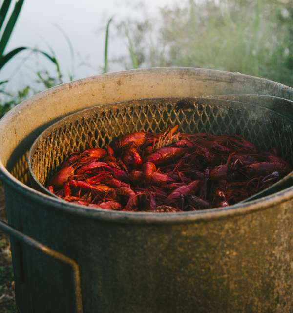 Crawfish Boiling in Pot