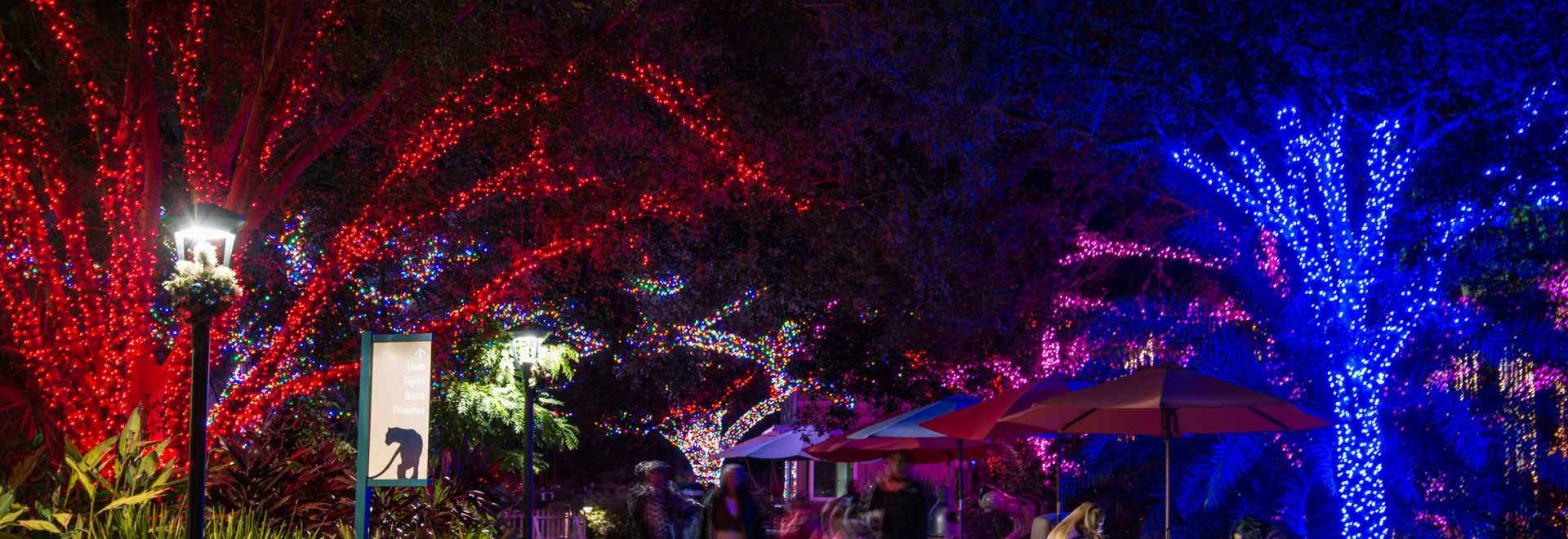 Holidays in Houston | Find Christmas Events, Concerts & Festivals