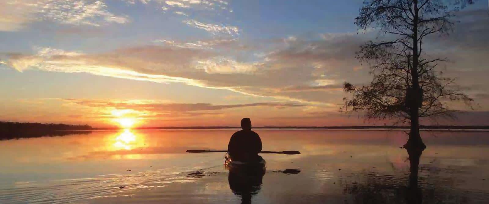 Kayak in Swamp