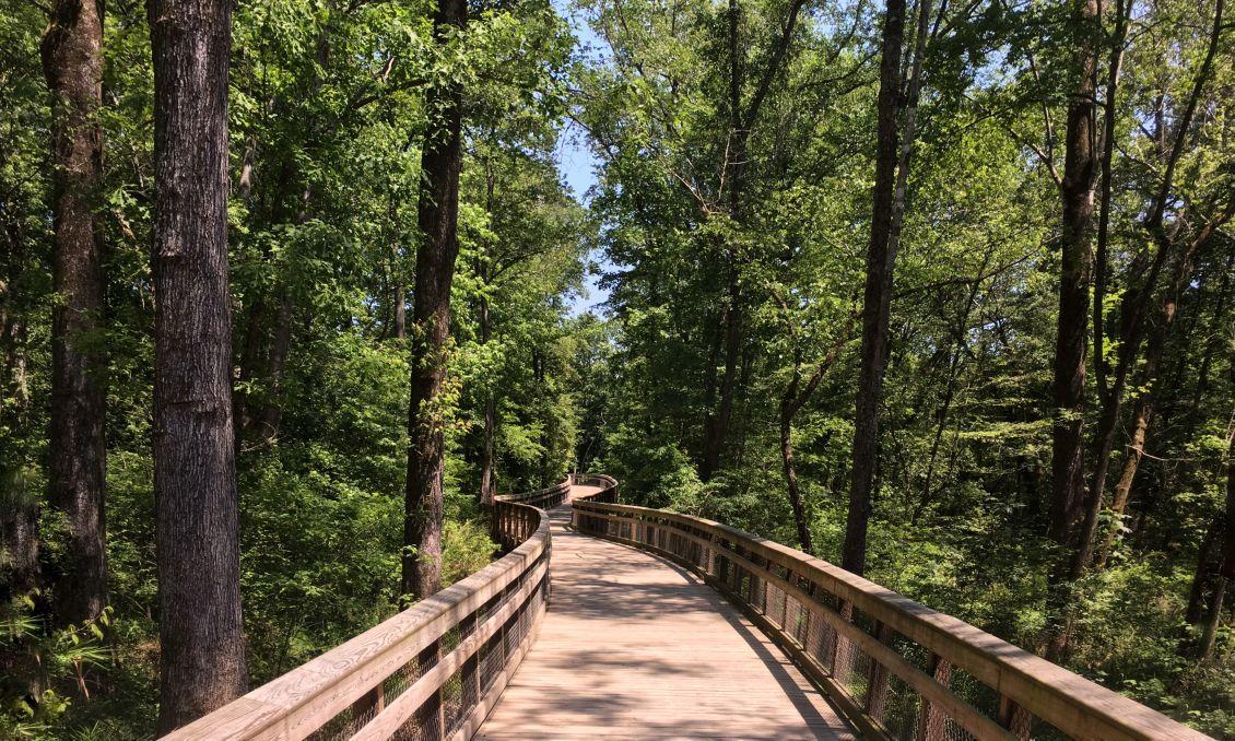 Walnut Creek Trail, 16:9