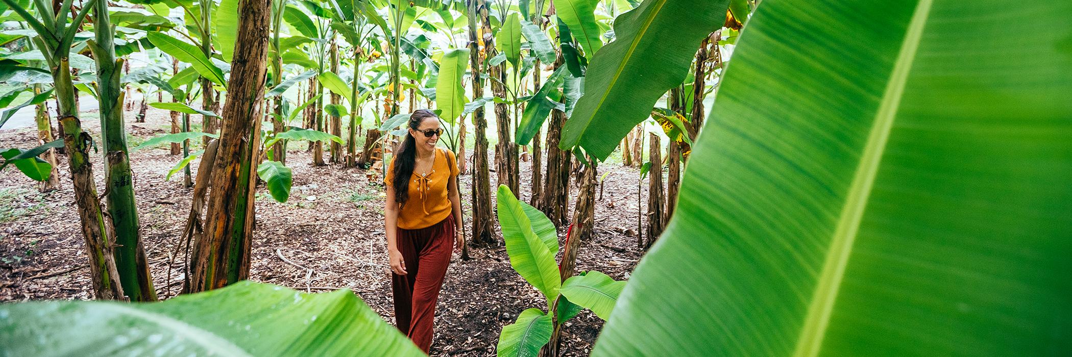 A woman explores the botanical garden & wildlife sanctuary at Flamingo Gardens