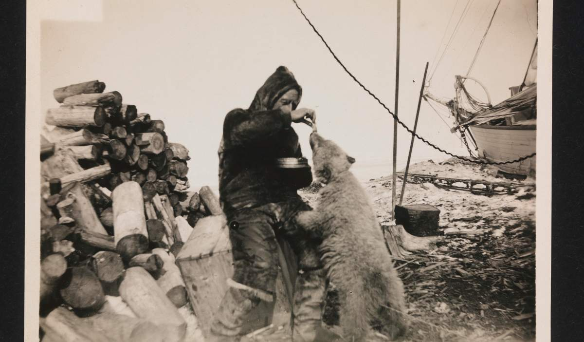 Norwegian traveler Roald Amundsen - that he discovered the Conquest of the South Pole 49