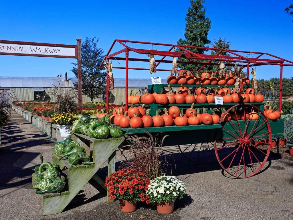 Schartner Farms