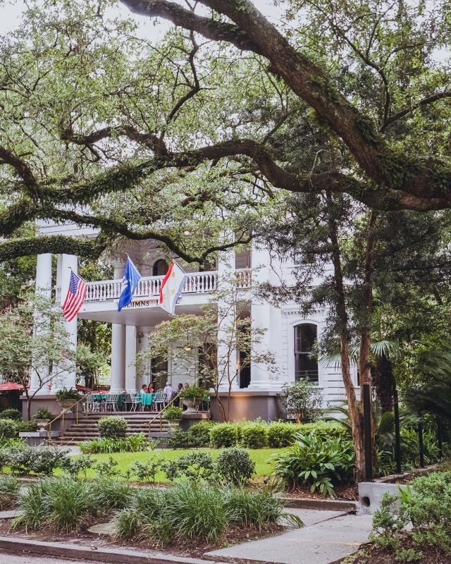 """Confederacy of Dunces Inspired Photos - """"Patrolman Mancuso inhaled the moldy scent of oaks and thought, in a romantic aside, that St. Charles Avenue must be the loveliest place in the world."""""""
