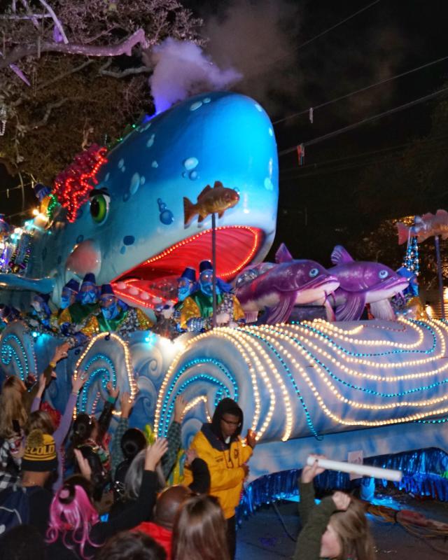 Krewe of Bacchus - Mardi Gras 2016