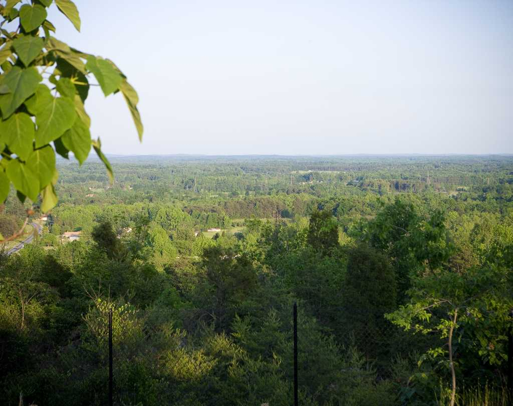 View from Dunn's Mountain