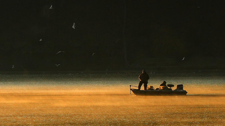 Gulls Morning Fishing on Keuka Lake