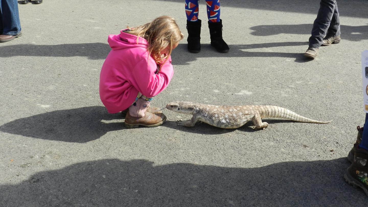 Southern Tier Outdoor Show Kid With Lizard