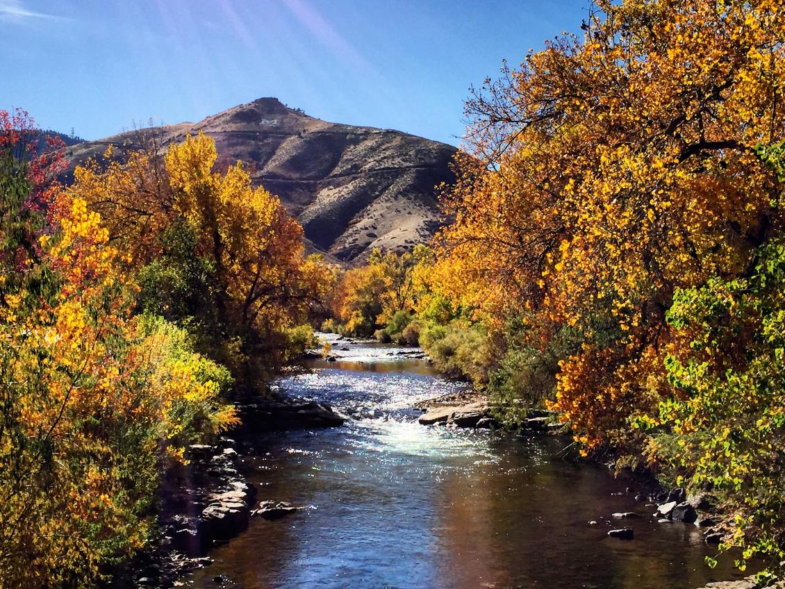 the golden rule take the kids to see fall colors in denver s
