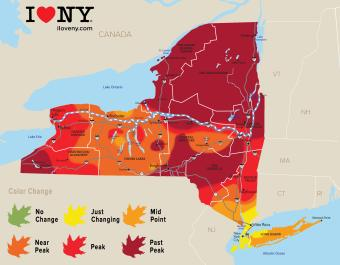 New York Fall Foliage Map Week 6 of 2018