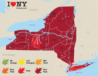 New York Fall Foliage Map Week 9 of 2018
