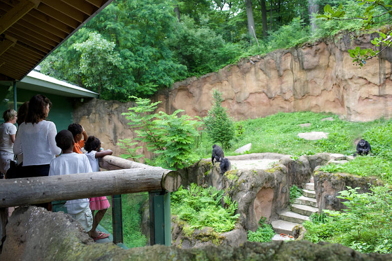 Tours of the John Ball Zoo were part of AZFA's Conference.